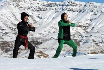 Iranian-Ninja-by-Marjan-Riahi-2-436x291